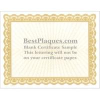 8.5 x 11 Certificate Paper - Gold 100 Sheets per Pack