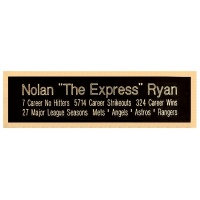 2.5 x 8.5 Three Line Super Plate Black Metal With Brass Letters on Brass Color Backing Plate